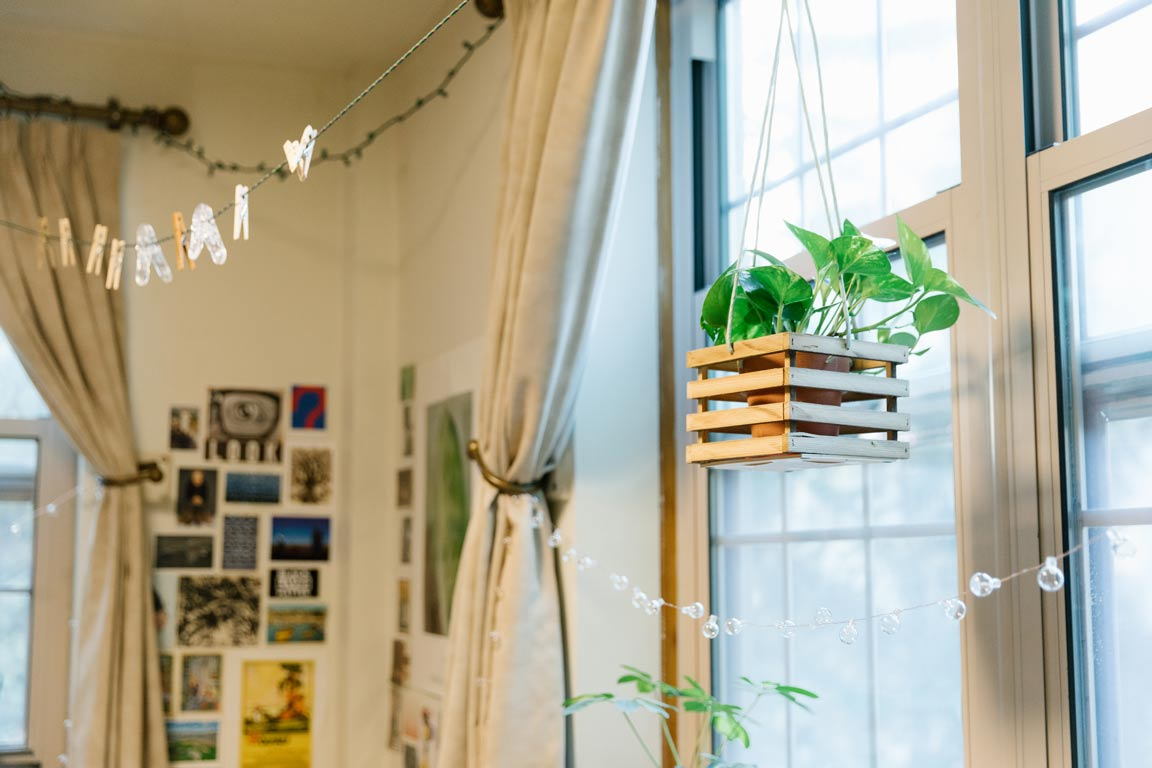 Corner of a decorated dorm room with a plant hanging in the window