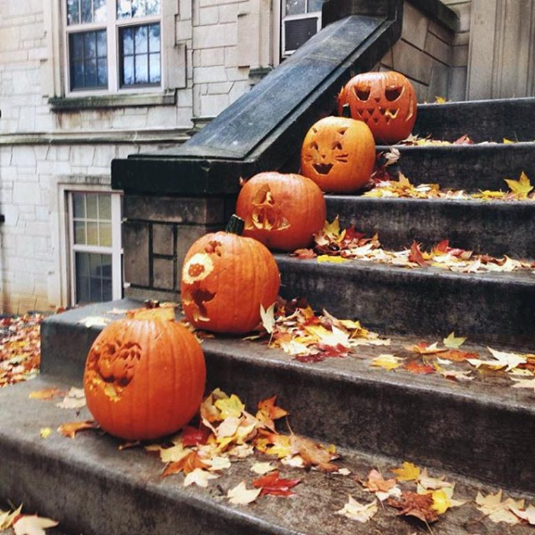 Five carved pumpkins on the steps leading up to Collins center